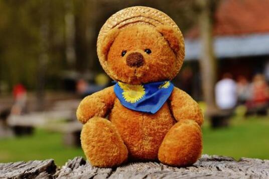 玩具熊作文200字