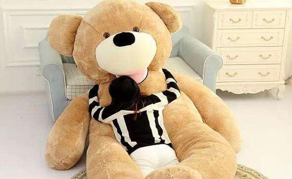 我最喜欢的玩具作文200字-毛绒大熊