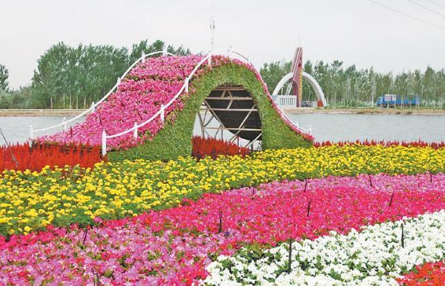 美丽的花坛.jpg