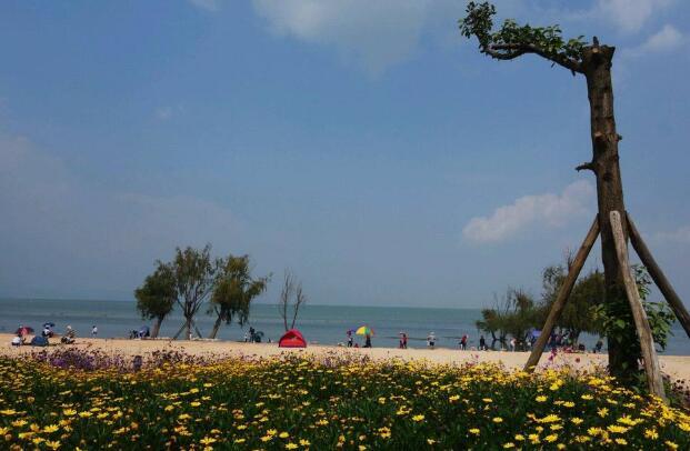 美丽的沙滩公园.jpg