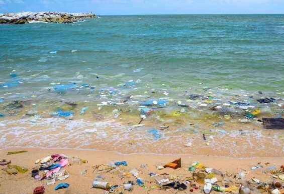 保护海洋环境童话作文600字
