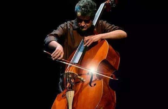我爱上低音提琴.jpg