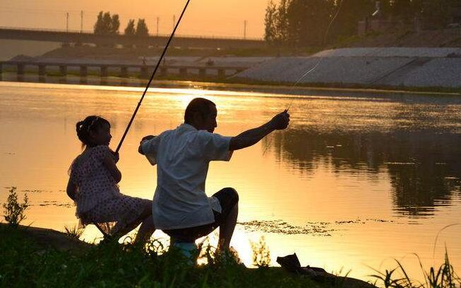 学钓鱼作文700字