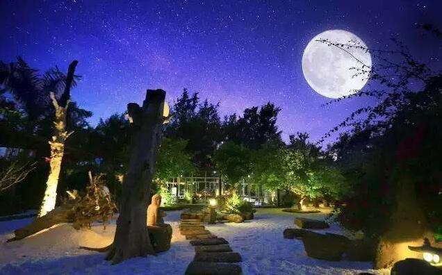 月光下的小院.jpg