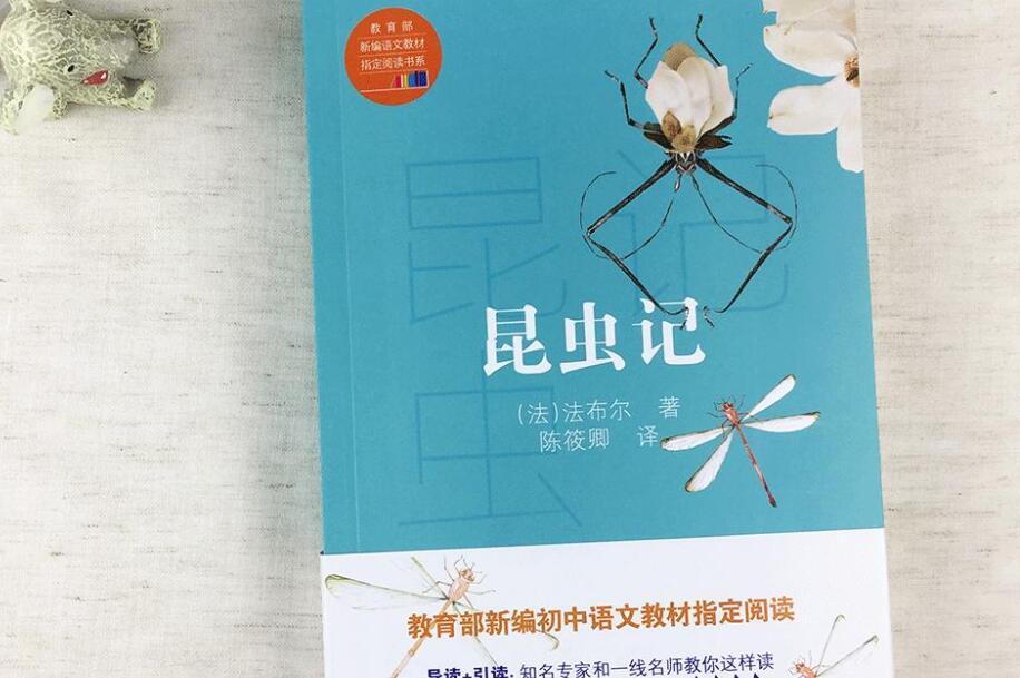 读昆虫记有感800字