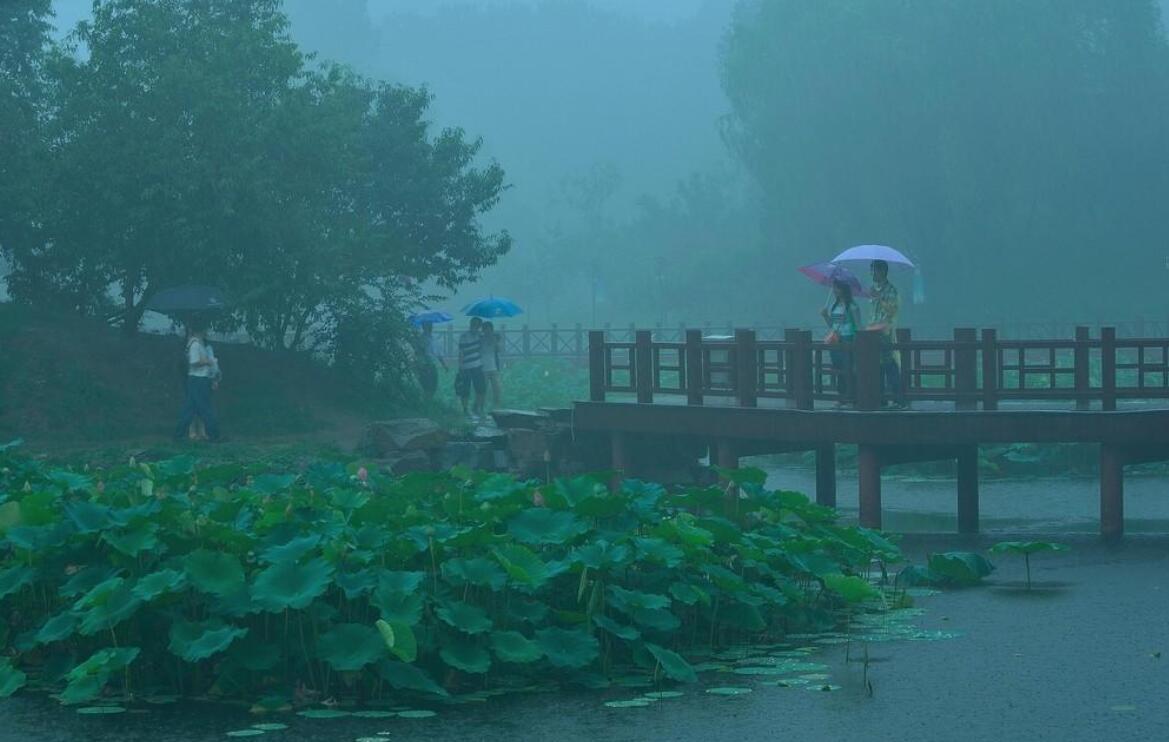 雨中即景作文500字五年级